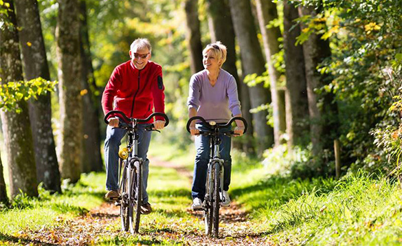 Couple riding bikes through a forest near Harderwijk in Holland/