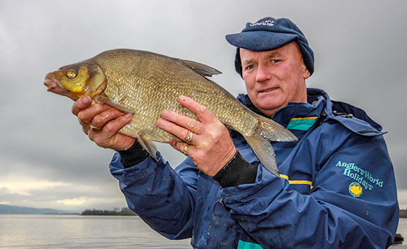 angler holding a recently caught bream/