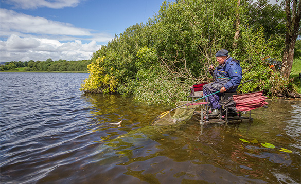 Angler landing a fish caught in a lake in Co Cavan/