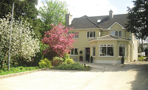 driveway with trees and pink and white bushes to the left leading to a large cream painted house/