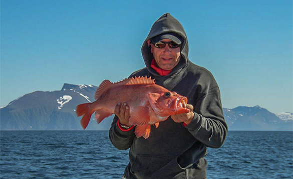 angler holding a redfish standing beside a fjord and snow covered mountains/