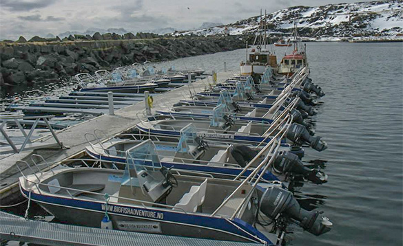 boats in a fjord moored against a jetty/