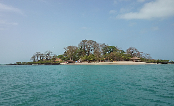 Island in the Bijagos Archipelago Guinea Bissau with sandy beach and huts set amongst trees/