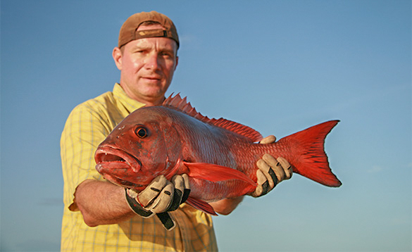Angler holding a cubera snapper caught  in the Bijagos Archipelago Guinea Bissau/