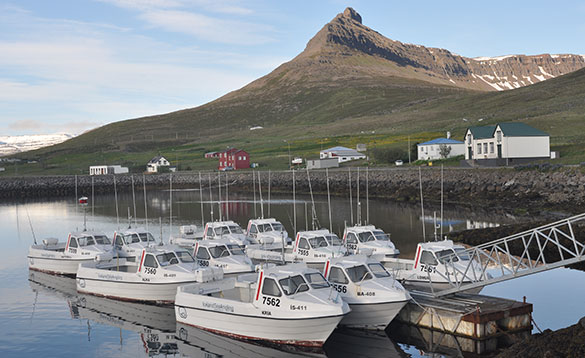 Harbour in Iceland with traditional sea fishing boats/