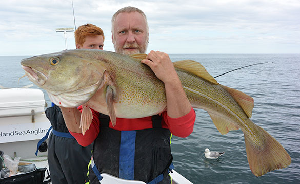 Angler holding a big cod caught in Iceland/