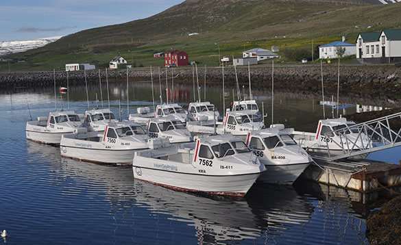 Angling boats moored in a harbour in Iceland/