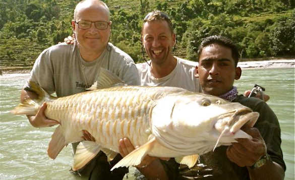 Three anglers holding a Mahseer fish caught in India/