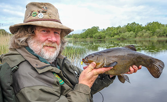 Tench are caught early in the morning or in the evening/