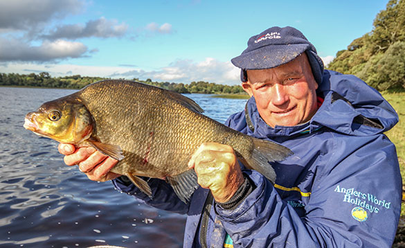 angler with a mint condition irish bream/