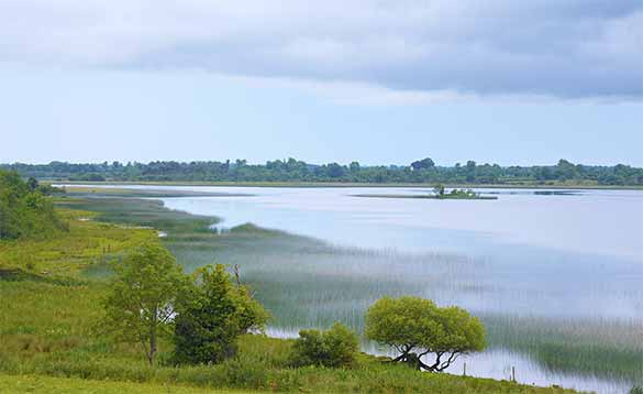 anglers pleasure fishing on the River Shannon/