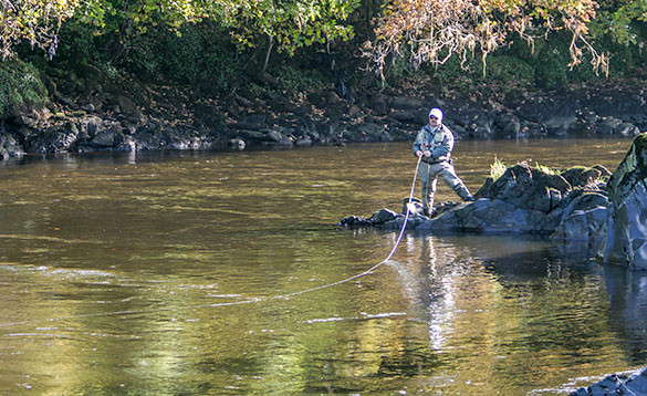 Good fly fishing pool for salmon on the River Mourne/