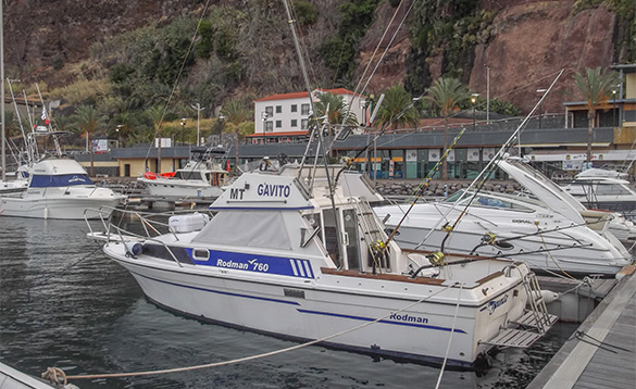 Angling boats moored against a wooden jetty in Calheta, Madeira/