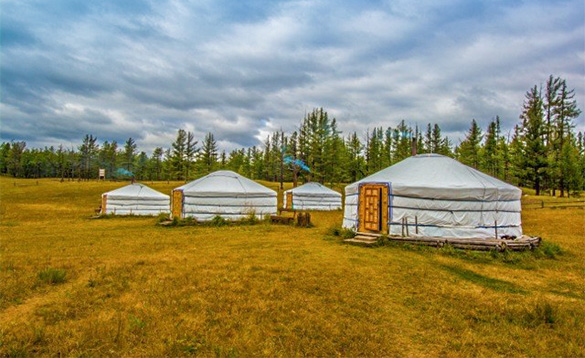 Group of four Yurts, traditional tents in Mongolia/