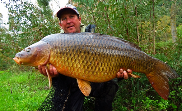 Carp grow big on these huge Spanish lakes/
