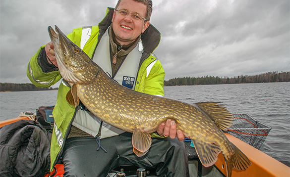 Angler sitting on a boat holding a pike caught in Sweden/