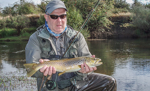 Nice river caught brown trout/