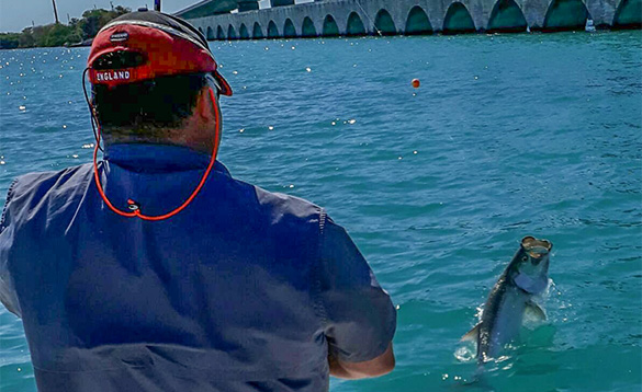 Angler reeling in a Tarpon caught in Florida/