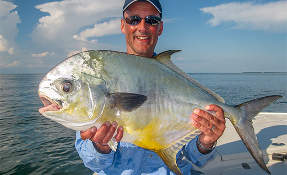 angler holsing a pompano, a silver fish with yellow under belly and rounded head/