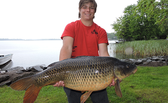 Young angler holding a 37lb carp caught in Ontario, Canada/