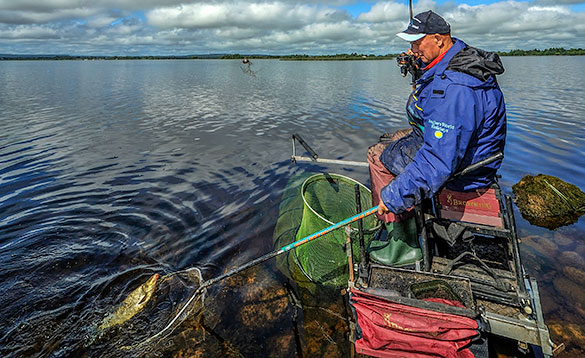 Angler landing a fish on a lake in Ireland/