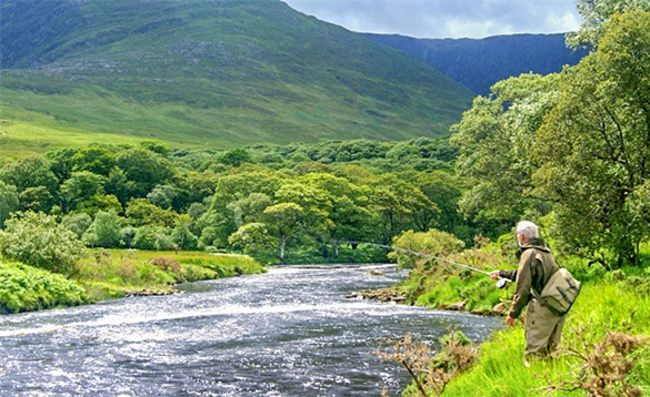 Angler fishing in a river in Ireland beside green forests at the foot of mountains/