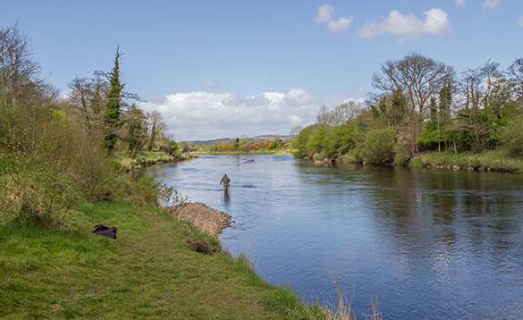 Angler standing in a river fishing in Ireland/