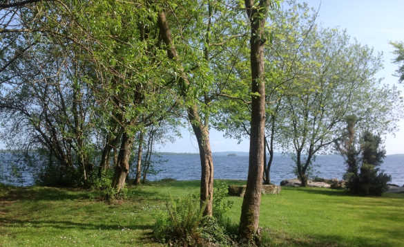View through trees towards Lough Derg from Cornode self-catering/