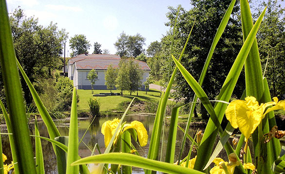 View across a pond to the Heron View self-catering cottage at Alder Cottages, Cootehill/