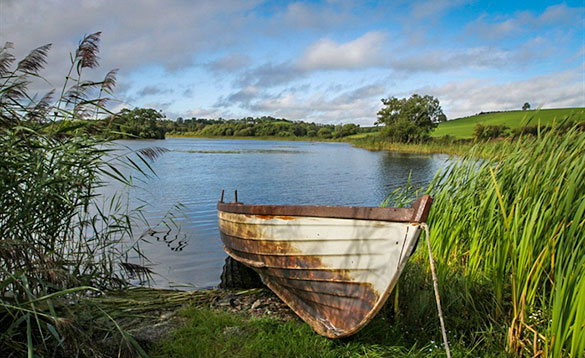 Rowing boat on the shore of a lake in Co Cavan/