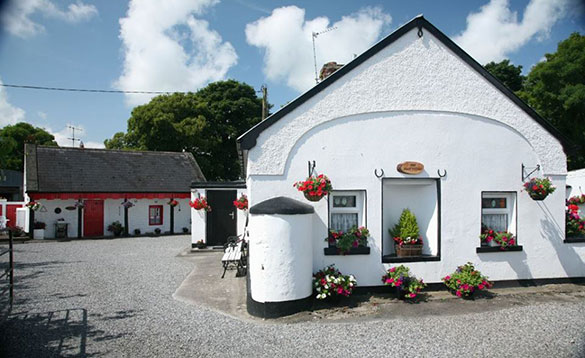 two traditional Irish cottages painted white with hanging baskets and flower pots scattered around containing brightly coloured flowers/