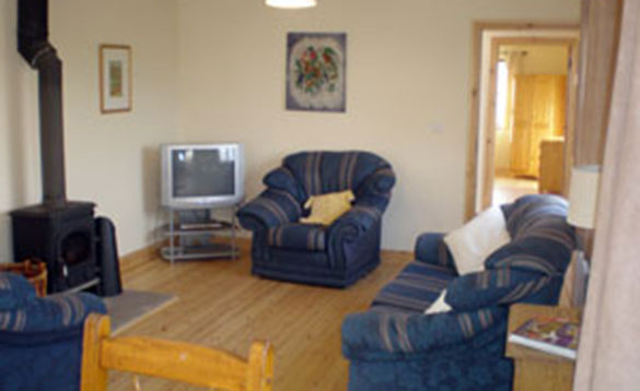 lounge with blue three piece suite arranged around a wood burning stove and television in the corner/