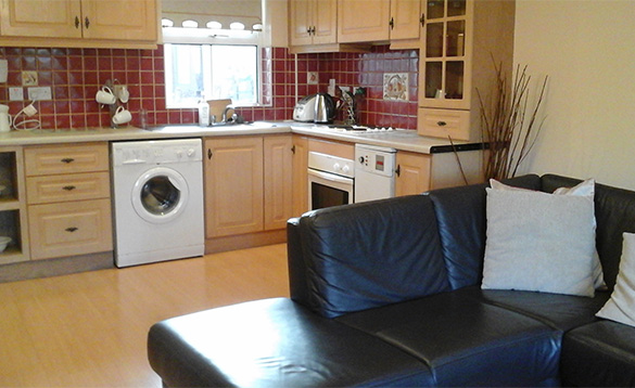 Lounge/kitchen in Connolly's self-catering apartment at Castleblayney/