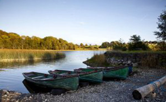 three green rowing boats tied up on a stoney shore by a river/