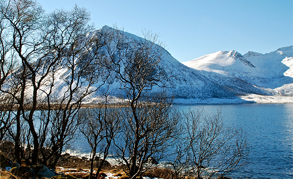 View across a fjord to snow covered mountains/