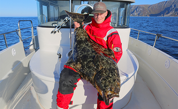 Angler sitting on a boat holding a large halibut caught in north Norway/