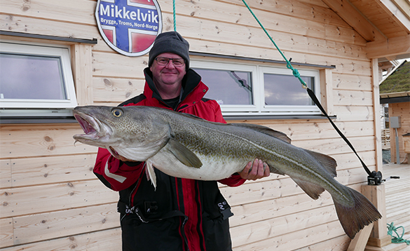 Angler with cod caught in North Norway/