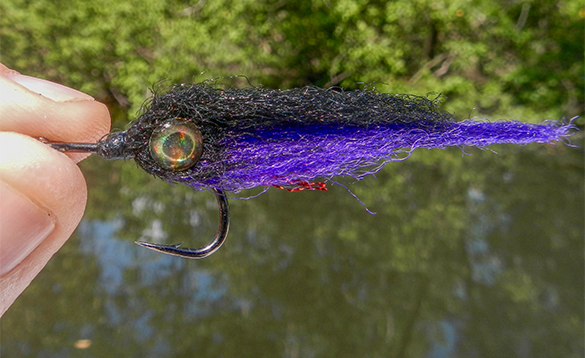 Close up picture of a hook and fly used for fishing/
