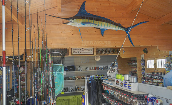 Rods in a fishing tackle shop/
