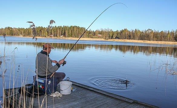 Angler fishing from a wooden jetty in Sweden/