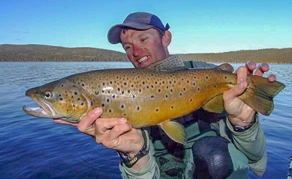 angler standing by a lake holding a big brown trout/