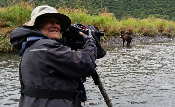Man taking pictures of a brown bear in a river in Alaska/