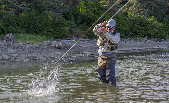 angler standing in the river reeling in a fish that is splashing in the water/