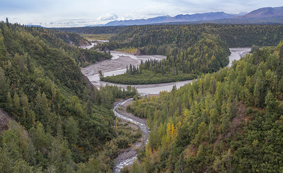 view of a river meandering though pine forestted hills/