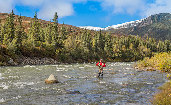 anglers standing knee high in a fast flowing river fishing/