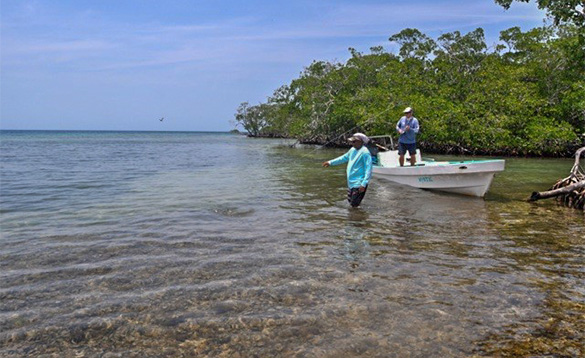 Two anglers fishing in Belize/