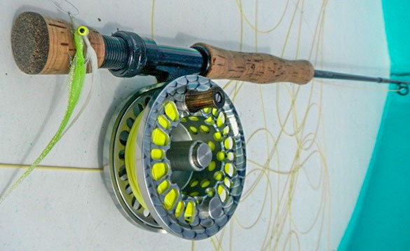 Rod and reel used for fishing in Belize/