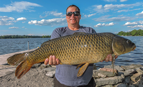 Angler holding a 25lb carp caught in Canada/