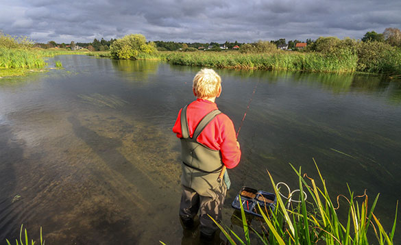 angler standing in a river fishing in Denmark/