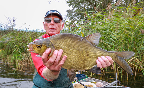 Feed it hard and you can catch bream like this all day long/